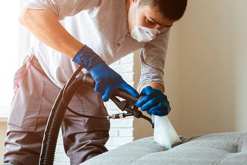 Limpeza Estofados e Tapetes